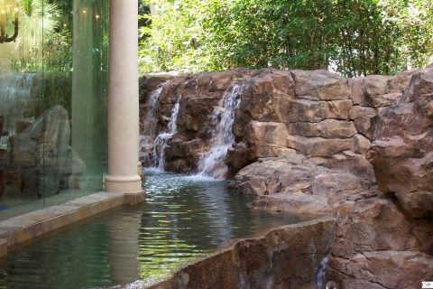 custom-florida-pool-designs7